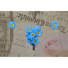 Set Brosa - Cercei Flori de Nu ma uita